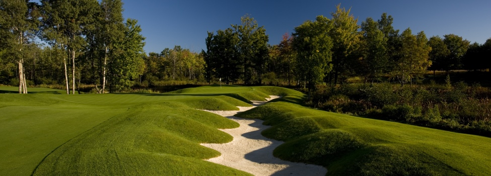 Central Michigan golf packages