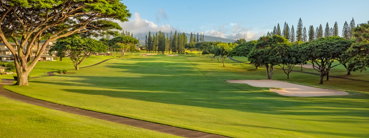 Hawaii golf packages